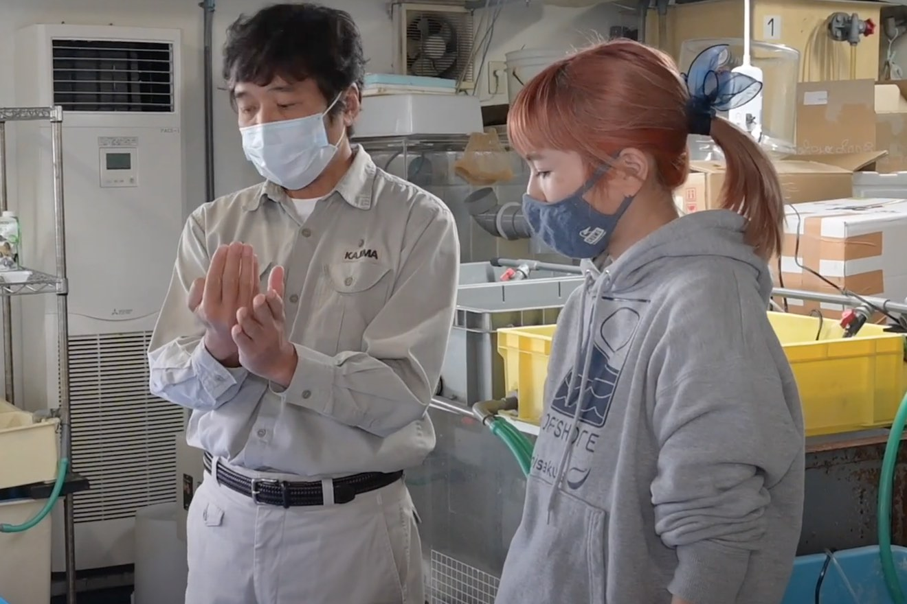 海森モリTV 第17話:4代目アマモちゃんの成長観察 え!? 枯れている!?