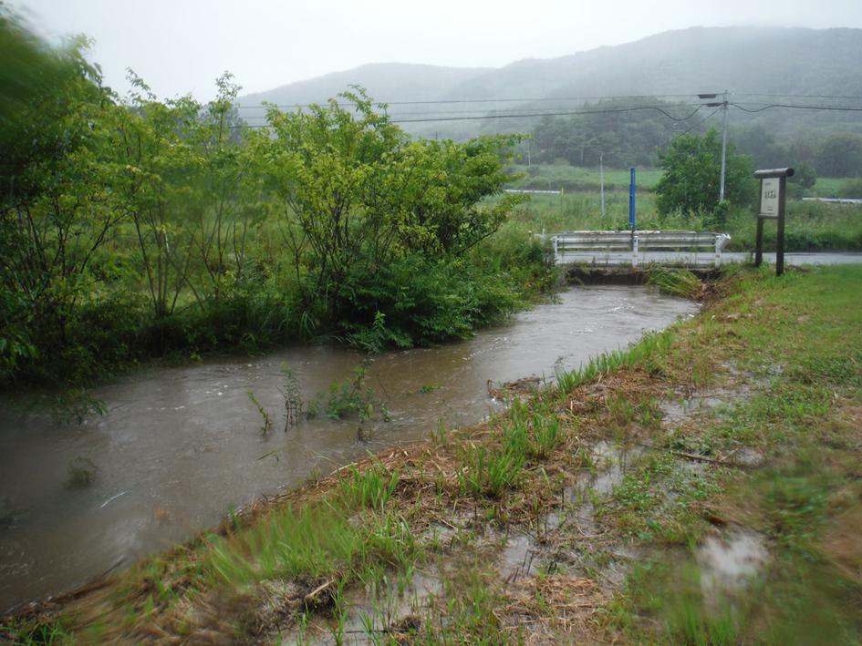 台風後の河川。水量は増して濁っている。