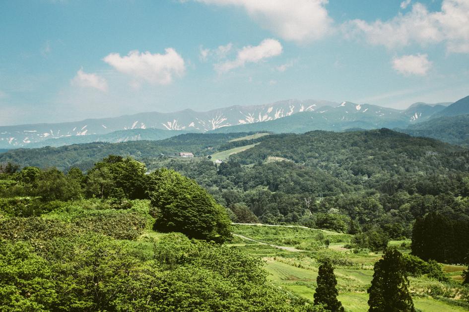 緑豊かな山々