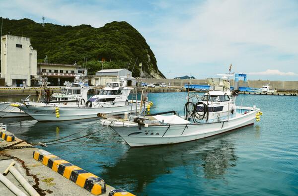 係留中の漁船