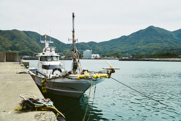 漁港に係留している漁船