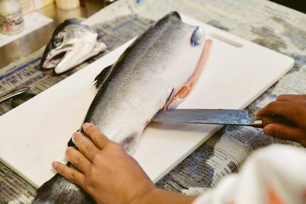 鮭を捌いてみた