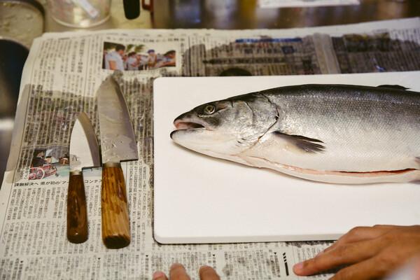 新聞紙の上に並ぶ、包丁と鮭。