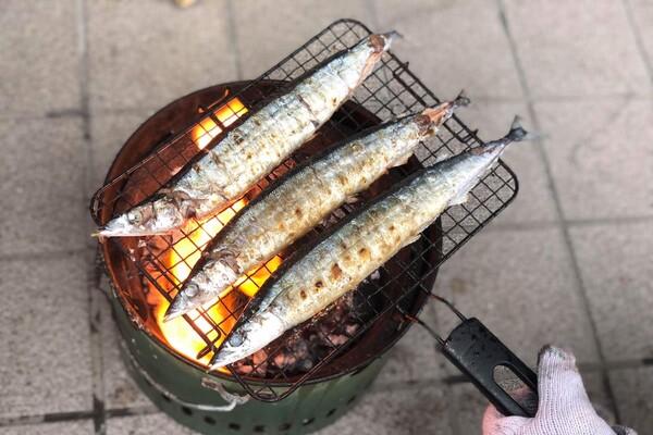炭火で焼くサンマ