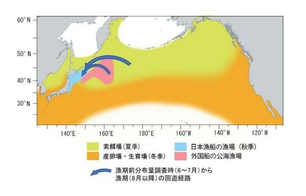 サンマの分布域(索餌場と産卵・生育場)と日本漁船及び外国漁船の主漁場位置