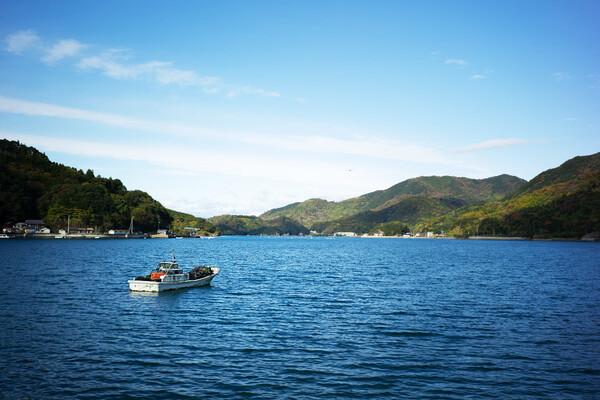 きれいな山と海