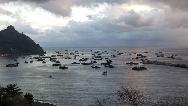 北朝鮮海域荒天回避のため、韓国鬱陵島南東部に位置するサドン港に錨泊する中国漁船