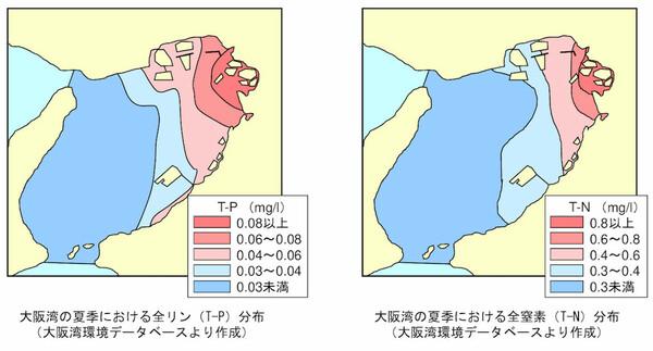 大阪湾の夏季における全窒素分布