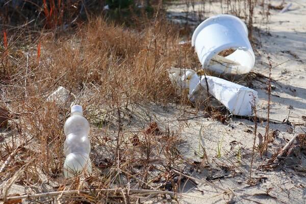 砂浜に落ちているプラスチックごみ