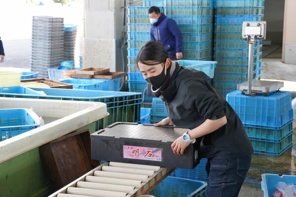 魚を運ぶ女性職員