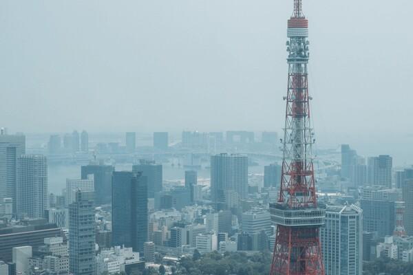 東京タワーとビルの写真
